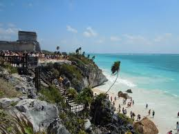 Tropical and Fun Delivery in tulum
